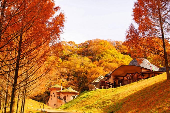 'Sống ảo' trong vườn cổ tích đẹp như mơ ở Nhật Bản