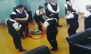 Trăn rơi từ trần xuống phòng họp ngân hàng Trung Quốc