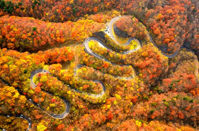 Bức tranh mùa thu ở con đường nguy hiểm bậc nhất thế giới