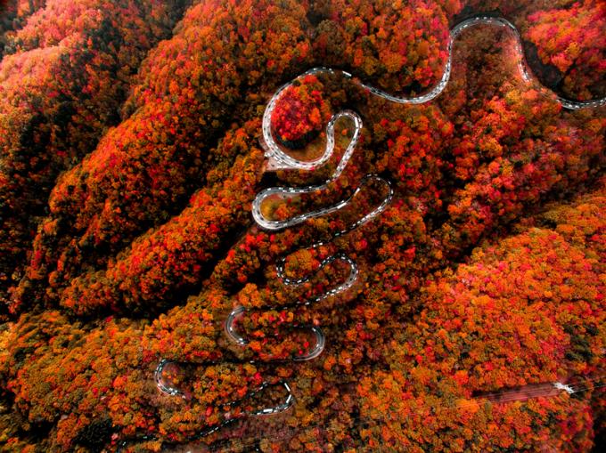 Bức tranh mùa thu ở con đường nguy hiểm bậc nhất Nhật Bản