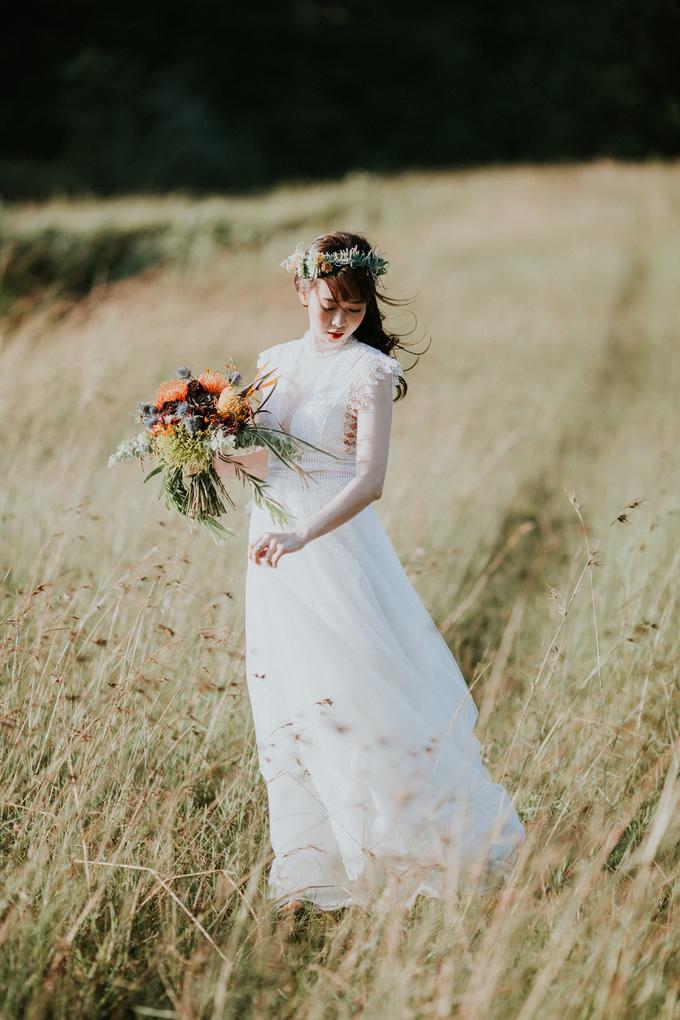 Ảnh cưới ở Đà Lạt của cặp nên duyên từ lớp tiếng Đức