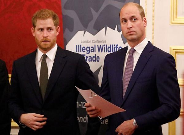 Hoàng tử William và Harry cùng xuất hiện trong một sự kiện hồi đầu tháng 10 ở London. Ảnh: PA.