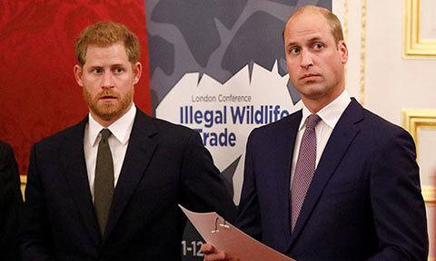 Thái tử Charles bị hai con trai loại khỏi phim tài liệu về Diana