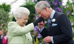 Nữ hoàng Anh dự định cho Thái tử Charles nắm quyền trong 3 năm tới