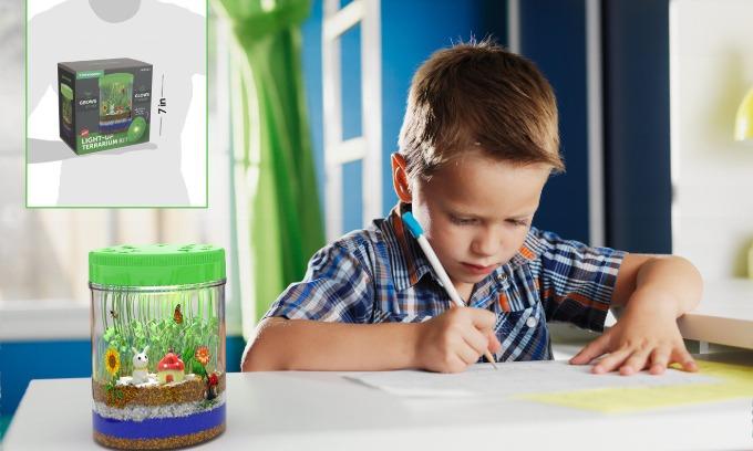 Vườn cây phát sáng (giá từ 927.000 đồng):Hãy để con bạn tự do trồng nên khu vườn các bé yêu thích với khu vườn mini này. Trong hộp cung cấp cho các bé bao gồm hai loại hạt giống, bốn lớp đất trồng, những mô hình chú thỏ, ngôi nhà nấm nhỏ xinh để tạo thêm tính sáng tạo cho góc vườn mini này. Đặc biệt, nắp hộp còn sở hữu những bóng đèn phát sáng, giúp khu vườn này trở thành một chiếc đèn ngủ độc lạ.