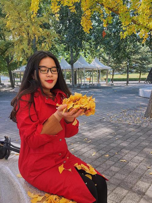 Không chỉ có khu rừng Zhanggezhuang mà thời điểm này ở Bắc Kinh, hàng cây ngân hạnh đang nhuộm vàng khắp các con phố và danh lam thắng cảnh nổi tiếng. Theo tư vấn của Thảo, bạn có thể tới sân vận độngOlympic, công viên Fragrant Hill vàđặc biệt là Vạn Lý Trường Thành khi lúc này, lá phong đang thay sắc.