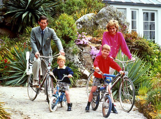 Hoàng tử William: Bố tôi dành quá ít thời gian cho các cháu - 2