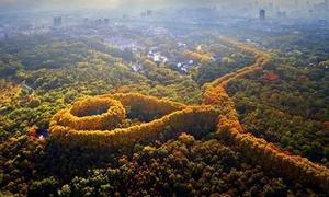 Cung điện hình viên ngọc mang tên Tống Mỹ Linh ở Trung Quốc