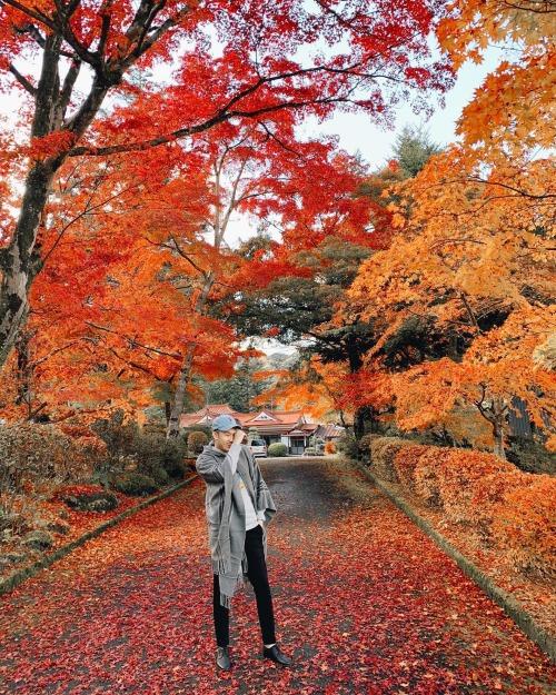 Dương Triệu Vũ chụp hình giữa khung cảnh tuyệt đẹp khi du lịch Nhật Bản.