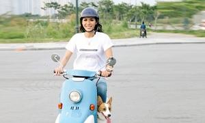 Minh Tú lái xe máy chở cún cưng dạo phố