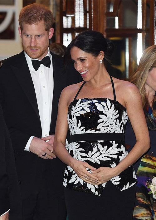 Trong khi đó, Hoàng tử Harry luôn theo sát vợ.