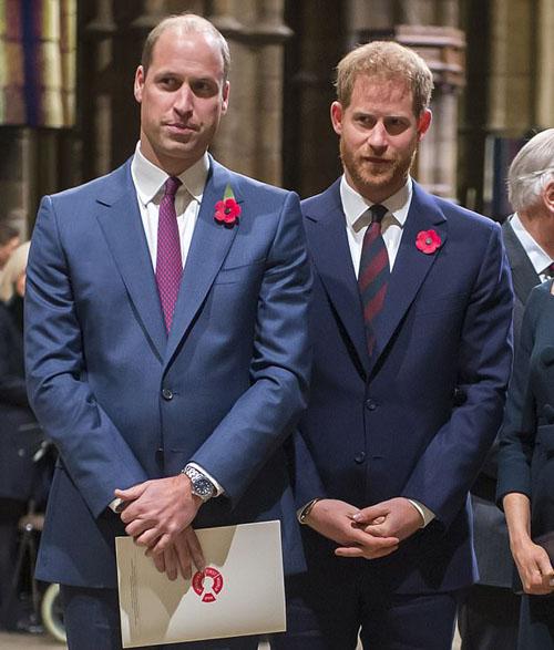 Hoàng tử William và Hoàng tử Harry trong một sự kiện tưởng niệm hồi đầu tháng này. Ảnh: AFP.