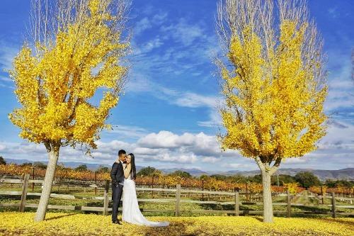 Tuấn Hưng và vợ chụp ảnh cưới lần 2 ở Mỹ - 1