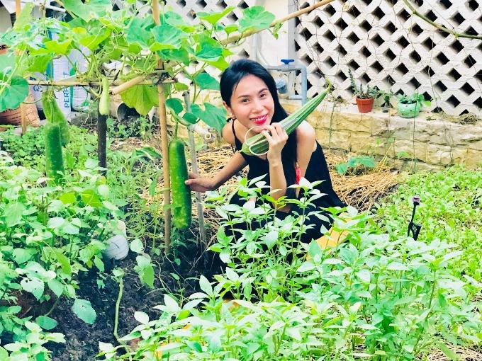 Trồng cây cũng đến ngày hái quả, cảm thấy hạnh phúc quá đi thôi, Thủy Tiên thích thú pose hình bên vườn rau sạch nhà trồng.