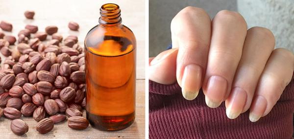Dầu jojoba chứa nhiều axit béo, chất chống oxy hóa, vitamin và khoáng chất, giúp làm móng tay chắc khỏe và dày hơn. Làm ấm dầu jojoba, thoa lên móng tay, massage nhẹ nhàng từ 2 - 3 phút.