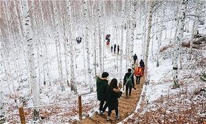 Đến xứ Hàn thực hiện giấc mơ chạm vào tuyết trắng mùa đông này