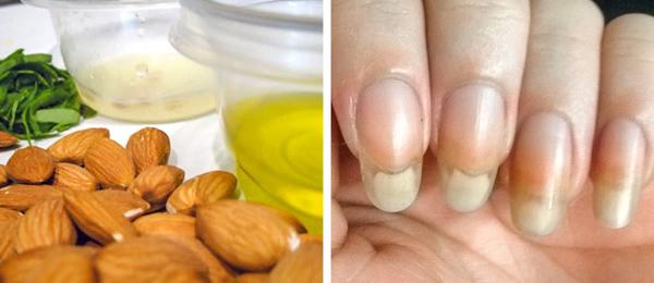 Dầu hạnh nhân chứa hàm lượng cao vitamin A, B, E, giúp dưỡng ẩm, nuôi dưỡng và sửa chữa những khiếm khuyết trên móng tay, làm mềm lớp biểu bì. Làm ấm dầu hạnh nhân, thoa đều lên móng, massage nhẹ nhàng từ 2 - 3 phút.