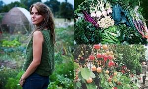 Cặp vợ chồng từ bỏ phố thị vào rừng nuôi gà, trồng rau
