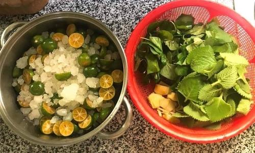 Trị ho cho trẻ bằng siro từ húng chanh, quất và diếp cá