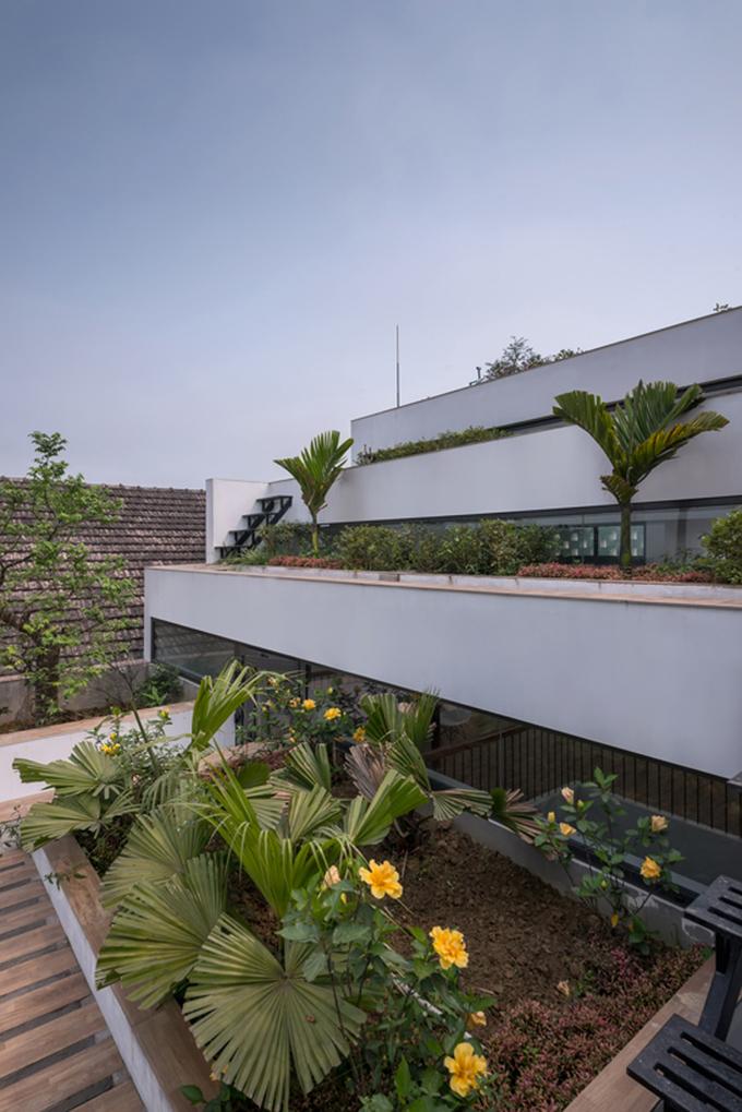 Nhà 4 tầng mô phỏng ruộng bậc thang đạt giải Kiến trúc xanh