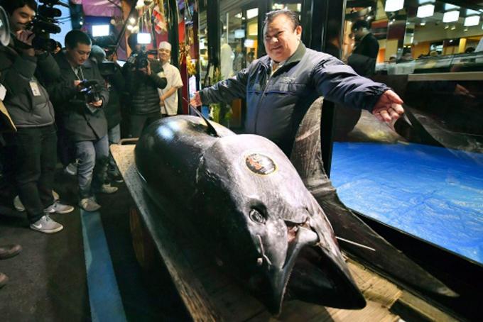 Ông Kiyoshi Kimura bên cá ngừ vây xanh đấu giá sáng 4/1 vừa qua. Ảnh: Ctvnews.