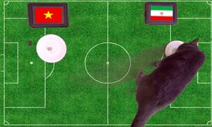 Mèo dự đoán Việt Nam thua Iran