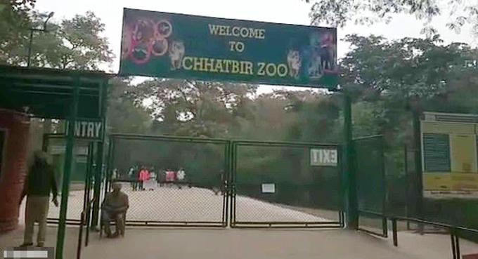 Vườn thú Chhatbir ở bang Bunjab, Ấn Độ. Ảnh: Youtube.