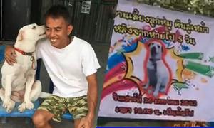 Người đàn ông Thái Lan mở tiệc mừng chó đi lạc trở về