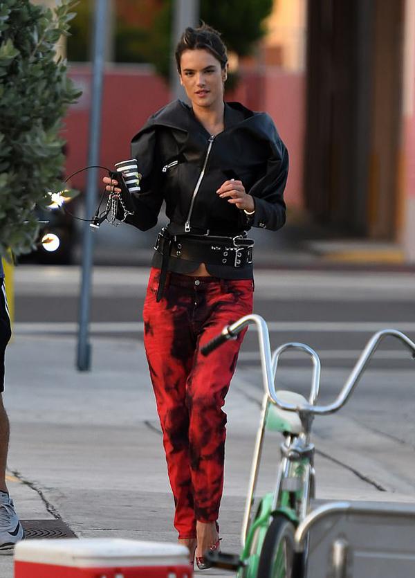 Alessandra Ambrosio đã có hai người con với bạn trai cũ - doanh nhân Mỹ Jamie Mazur. Cô và Jamie gắn bó từ năm 2008 và chia tay trong êm thấm vào đầu năm 2018.