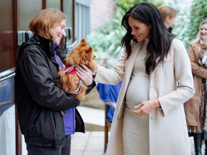 Meghan mặc váy của HM tới thăm tổ chức từ thiện dành cho chóở London hôm 16/1. Ảnh: Kensington Palace.