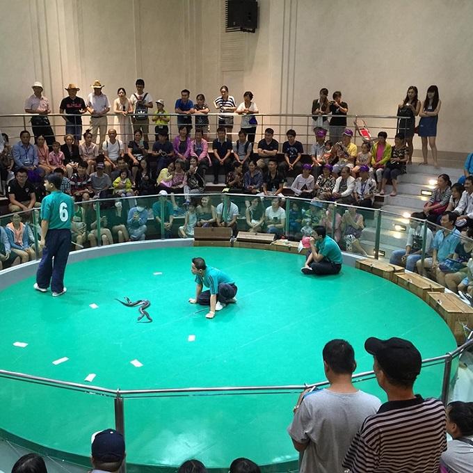 Đến với Trung tâm Nghiên cứu Rắn độc Hoàng gia Thái Lan (thuộc Đại học Chulalongkorn, tọa lạc tại một vùng ngoại ô thủ đô Bangkok), du khách đượcthưởng thứcbuổi biểu diễn đặc biệt do những chú rắn thực hiện.Sau khi xem biểu diễn, du khách có thể tham quan phòng trưng bày các sản phẩm được chế biến từ rắn và được nghe thuyết trình về sự sinh sản, chu kỳ phát triển của rắn; sự nguy hiểm cũng như công dụng của rắn... Khách tham quan cũng có thểchạm vào những chú rắn và lưu lại những tấm ảnh độc đáo cùng với loài bò sát nguy hiểm này.
