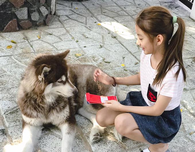 Ngọc Diễm mới mua chú chó này về làm bạn với con gái. Bé Chiko đặc biệt yêu động vật và thích chăm sóc chó mèo.