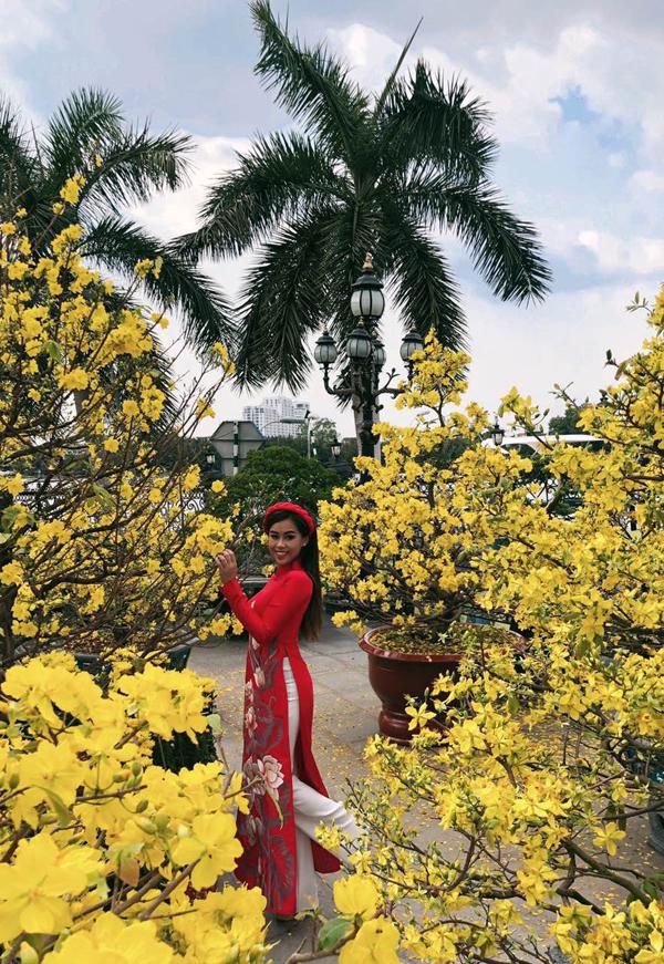 Thảo Tiên điệu đà khoe sắc bên những cây mai đang trổ hoa vàng rực.