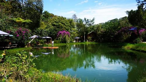 Thời tiết Đà Lạt đang vào mùa đẹp nhất trong năm.