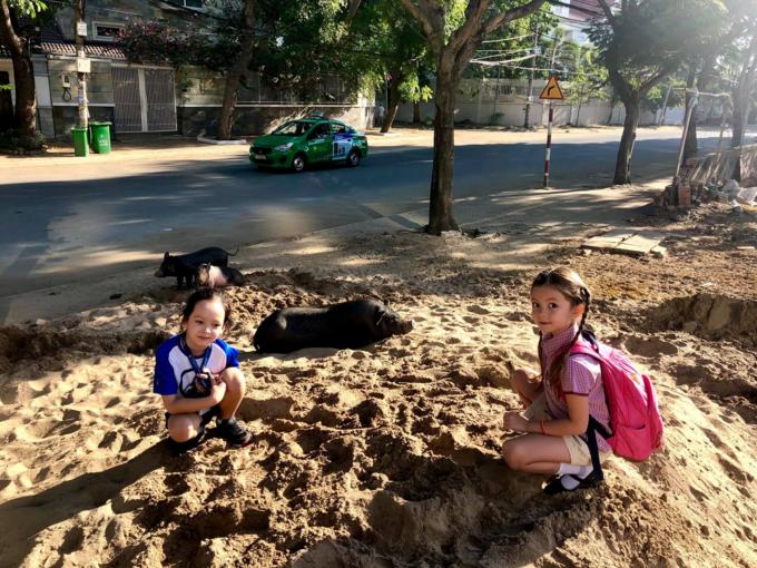 Con trai Hồng Nhung thức dậy từ 6h sáng và giục mẹ chở đi họcvì muốn là người đầu tiên bước vào cổng trườngsau những ngày nghỉ Tết. Tuy nhiên cả ba mẹ con bị quê khi đi sớm tới hai ngày. Nữ ca sĩ sau đó đưa các con đi dạo và bắt gặp cảnh tượng đáng yêucủa một gia đình lợn đang đùa nghịch bên bãi cát.