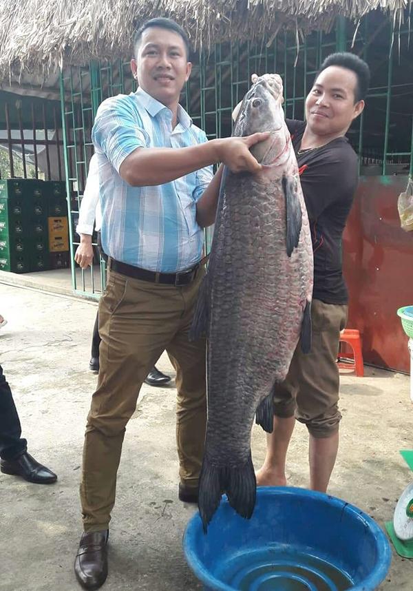 Anh Tài (phải) và người bạn rất vất vả mới nhấc bổng được con cá.