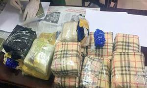 Gần 300 kg ma túy bị chặn bắt ở Hà Tĩnh