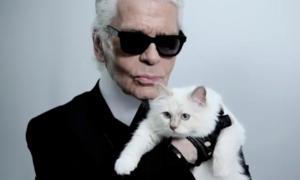 Tài sản của Karl Lagerfeld có thể để lại cho 'người tình' mèo