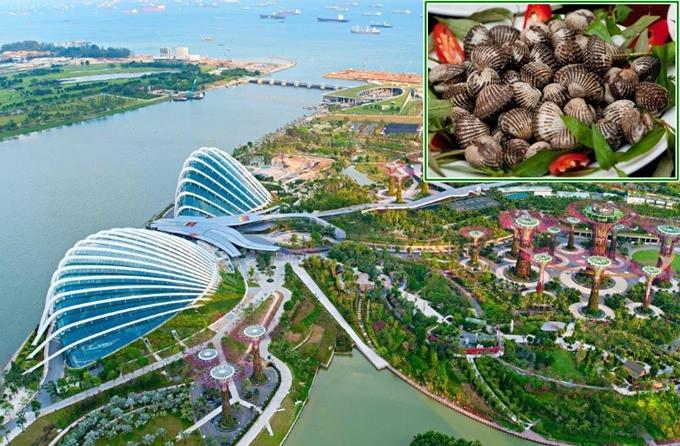 4 công trình đồ ăn thú vị ở Singapore - 3