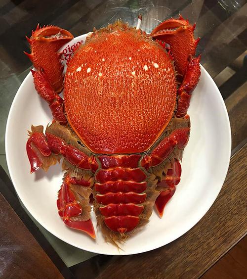 Đảo Phú Quý nổi tiếng với nhiều món hải sản ngon như cua Huỳnh Đế. Thanh Thuý tư vấn, Tới đảo Phú Quý bạn phải được thưởng thức món cua đặc sản thơm ngon này với mức giá chỉ từ 350.000 – 400.000/1kg