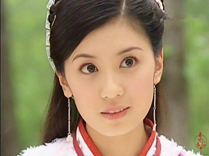 Với cặp mắt to, gương mặt bầu bĩnh, Giả Tịnh Văn bộc lộ nét thông minh, tinh quái của Triệu Mẫn trong bản phim năm 2005, đóng cặp Tô Hữu Bằng. Nữ diễn viên còn được bình chọn là Triệu Mẫn xinh đẹp nhất trên màn ảnh.