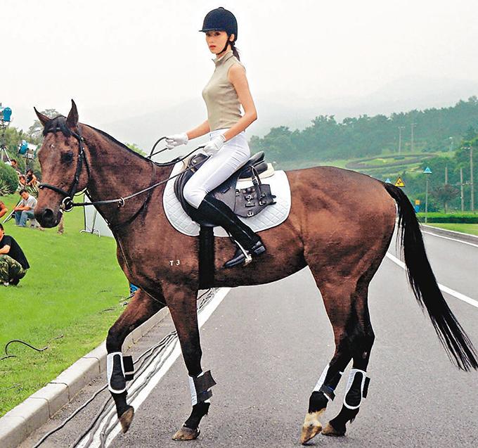 Trong một lần quay quảng cáo tại Trung Quốc, siêu mẫu Đài Loan Lâm Chí Linh không may bị ngã ngựa, dẫn đến gãy sáu xương sườn.