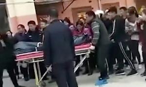 Thiếu niên 13 sát hại mẹ vì giết chó cưng