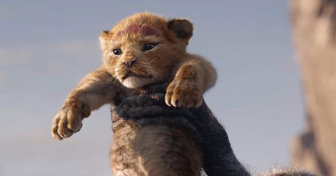 Sư tử Simba ở những cảnh đầu tiên của phim.