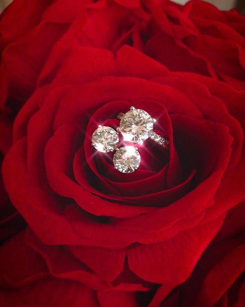 Phạm Hương khoe món quà được bạn trai tặng gồm chiếc nhẫn lấp lánh kèm đôi hoa tai bằng kim cương gắn trên đóahoa hồng. Fan đồn đoán người đẹp sắp lên xe hoa.