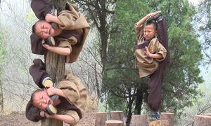 Tiểu hòa thượng Thiếu Lâm Tự uốn gập người quanh thân cây