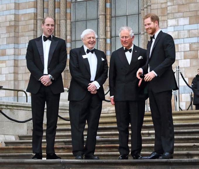 Thái tử Charles, Hoàng tử William, Hoàng tử Harry đứng cùng SirDavid Attenborough trước cửa Bảo tàng Lịch sử Tự nhiên, London, hôm 4/4. Ảnh: WireImage.