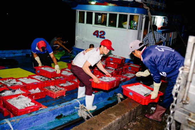 Hành trình 48 tiếng từ cảng biển tới bàn ăn của thực phẩm tại Bách hóa Xanh