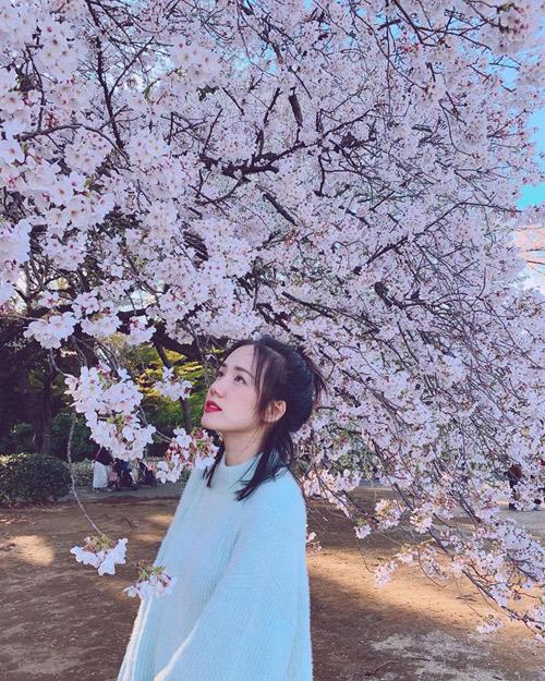 Ca sĩ Phương Ly là một tín đồ Nhật Bản. Em gái Phương Linh từng sang Nhật nhiều lần trước đây trong các chuyến du lịch nhưng lần nào cũng mê đăm. Năm nay đúng thời điểm sakura bung nở đẹp nhất,chỉ mong sao mùa xuân năm nào cũng được có mặt ở Nhật vàocác mùa khác nữa. Mỗi lần mỗi thời tiết khác nhau nhưng lần nào thì cũng tự nhủ sau này sẽ quay lại nữa, người đẹp chia sẻ. Mỗi lầntới Tokyo, cô đều tới viếng thăm chùa Asakusa linh thiêng và cầu mong những điều may mắn, tốt đẹp nhất.
