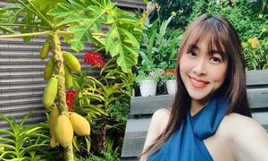 Hoa thơm, trái ngọt trong góc vườn của Diệp Bảo Ngọc